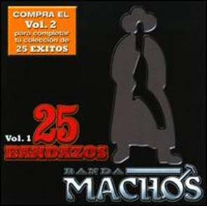 25 Bandazos, Vol. 1 (2009)