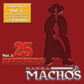 25 Bandazos, Vol. 2 (2009)