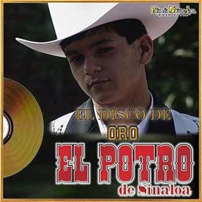 Album El Disco De Oro