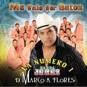 Me Vale Ver Gatos (2009)