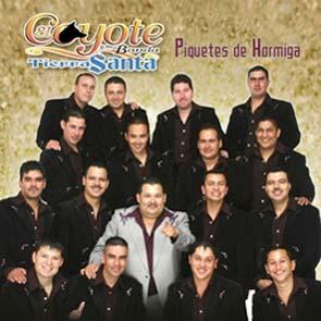 Piquetes De Hormiga (2004)