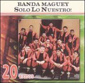 Sólo Lo Nuestro (20 Éxitos) (2005)
